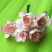 Цветы вишни двухцветные бело-розовые, в букете 10 шт, размер бутона 2,5 см, материал Mulberry paper, пр-во Таиланд.