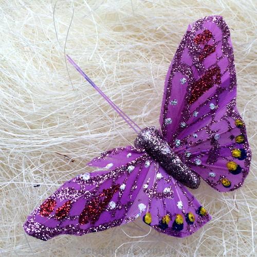 Декоративные бабочки и