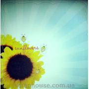 Бумага для скрапбукинга Spring Fling & Summer Days 42