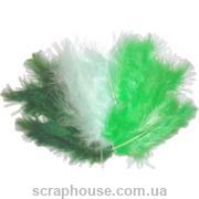 Перышки Green - ассорти