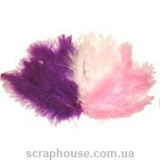 Перышки - Pink ассорти