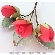 Розы в бутонах красные