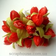 Тюльпаны алые с зелеными листиками