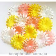 Набор цветов для скрапбукинга Нежность