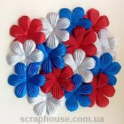 Набор цветов для скрапбукинга Праздник
