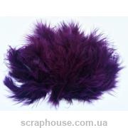 Перышки чернильно-фиолетовые очень пушистые!
