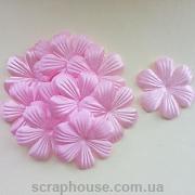 Цветы лилия нежно-розовые
