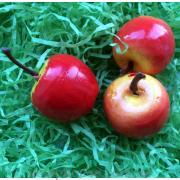 Яблоко красно-желтое декоративное
