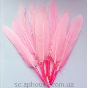 Перо цветное розовое