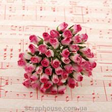 Бутоны роз PINK/WHITE