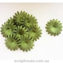 Цветы для скрапбукинга астра травяные