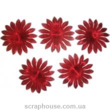 Цветы астра бордо для скрапбукинга