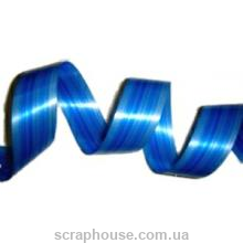 Лента лист аспидистры синяя полоса