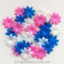 Набор цветов для скрапбукинга Французский карнавал