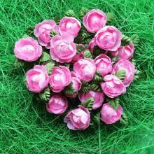 Пионы бело-розовые на зеленом листике