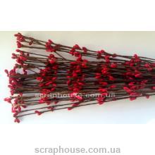 Веточки с красными ягодами