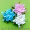 Гардении White Blue & Pink